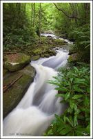 Rushing Water by TRBPhotographyLLC