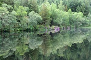 At Glencoe Lochan by MaresaSinclair