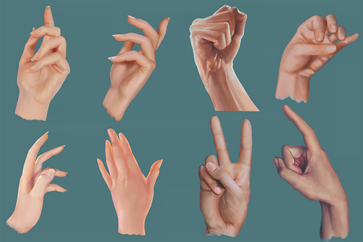 Male and Female Hand Studies by fantasio