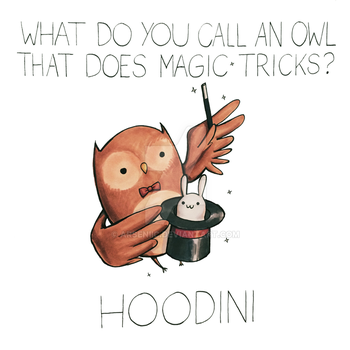 What do you call an owl that does magic tricks? by arseniic