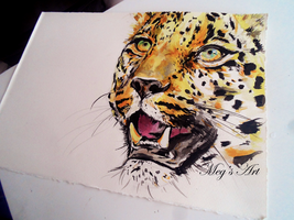 Leopard ink drawing by stardust12345