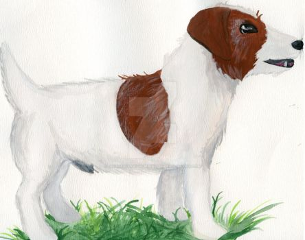 Jack Russell Terrier Watercolor by johnpaulgeorgeringo6