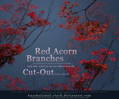 Red Acorn Branches Cut Out by kuschelirmel-stock