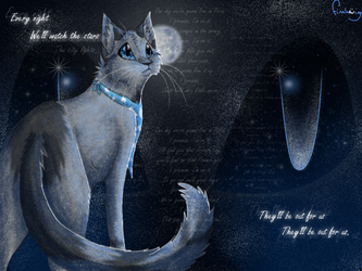 Watch the stars by Finchwing