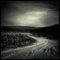 The path by DrumsOfWar