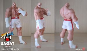 SAGAT 1/14 RESIN KIT by rgm501