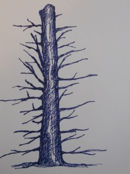Tree by kurtdawg619