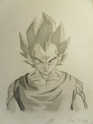 Vegeta by moonprincess22