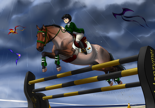 Aim High by CSStables