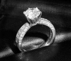 Engagement Ring by rayt