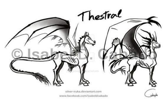 Thestral sketches by Silver-Iruka