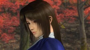 DOA5LR Ayame Hair by SheikProject