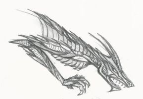 Dragon Sketch by MarissaWalker