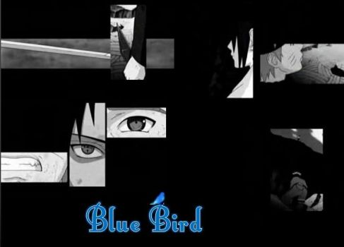 Blue bird by kasumiyaoifan
