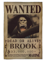 Brook Wanted One Piece by x6793x