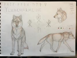 Ylvacharmeine by Assuwa