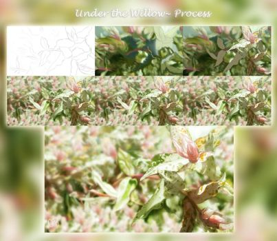 Process~ Under the Willow (Step by Step Info) by ChellytheBean