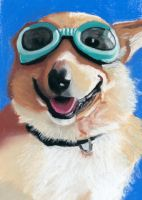 felix in goggles by classina