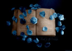 Book of the Silence by lostbooks