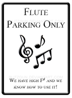 Flute Parking Only by blitzgun