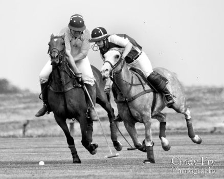 Polo Match by lost-nomad07