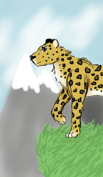 Leopard in the Mountains by Amberk11