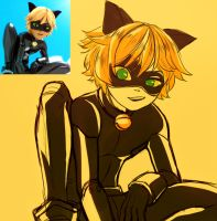 Chat Noir by Coolyoku