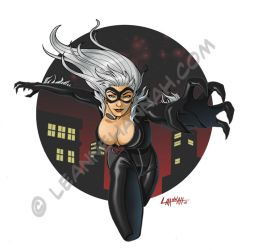 Black Cat Colors by stratosmacca