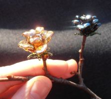 Day and night glass roses by fairyfrog