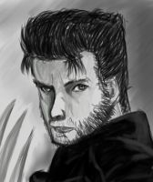 Wolverine Portrait by LordDoublesword