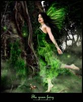 The green fairy... by Evelin-Novemberdusk