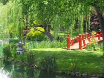 Chinese Bridge Garden by Featherwench
