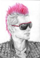 The pomegranate mohawk by littleglamster