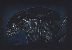 Alien - AVP by J-Redd