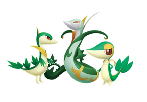 Snivy, Servine and Serperior by OshawottGirl