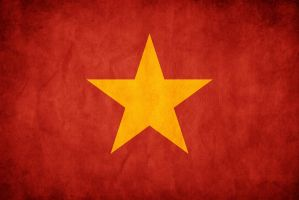 Vietnam Grunge Flag by think0