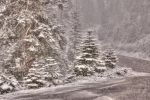 May snow by kayaksailor