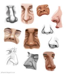 Nose studies by JeffSearle