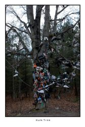 Shoe tree by jrstreets