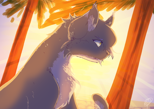Paradise - Redraw by EmberstoneFC