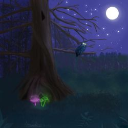 Forest night by Anezka00