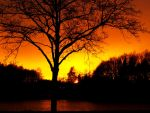 Miracle of sunset by zhaleh