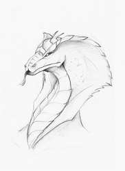 Naga Head - Skribble by DivianaAjatar
