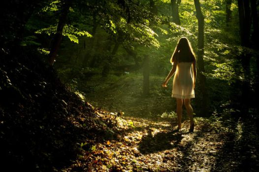 the fairy of the woods by Patyi