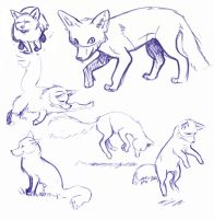 Fox doodles 1 by dollyolly1