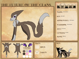 Falconheart's referance sheet by catiewith