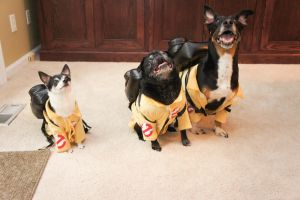 Ghostbusters Dogs II by LDFranklin