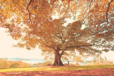 Everyday, It's Always Autumn. by Mars-Hill