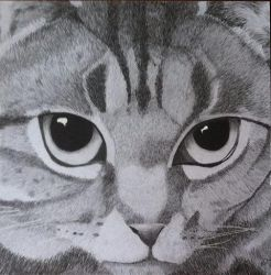 Cat *SOLD* by Summia-art