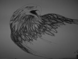 Eagle by IronOrc